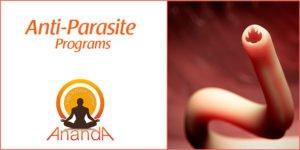 Anti-Parasite Program